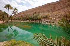 WADI AL ARBAEEN TOUR - an oasis spot in the middle of the barren and dry mountains. It is one of the most beautiful wadis and its pools with clear deep blue water give you an opportunity to take a refreshing dip.