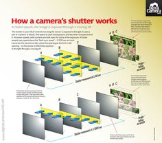 Your camera's shutter: so how does it actually work? (free photography cheat sheet)