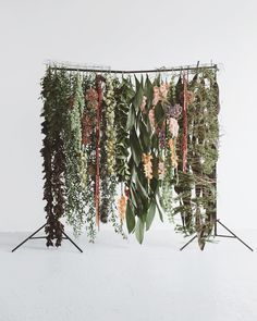 Something we build up to the honor of summer. Backdrop Ideas, Ceremony Backdrop, Backdrops, Photo Zone, Dragon Party, Gladiolus, Florists, Flower Wall, Wildflowers