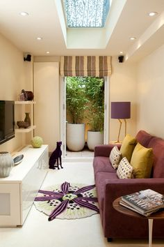 decorating small living rooms long narrow room skylight suspended ceiling purple sofa