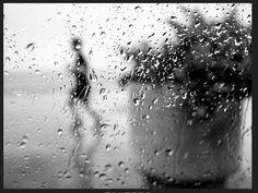 Behind the Windows Black White Photos, Black And White, Autumn Painting, Street Photographers, Rain, Windows 10, Candid, Reflection, Ideas