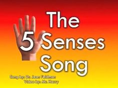 The 5 Senses Song song by Dr Jean Feldman video by Mr Harry mp4