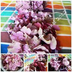 http://svolazzieventi.blogspot.it/2012/08/le-ortensie.html