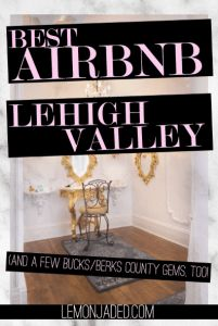 Best Airbnb in the Lehigh Valley, PA | best PA airbnb | airbnb blue mountain ski resort
