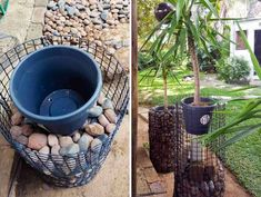 Add height and interest to your garden with this easy and affordable gabion planter tutorial. Add height and interest to your garden with this easy and affordable gabion planter tutorial. Garden Yard Ideas, Garden Crafts, Garden Projects, Garden Art, Rock Planters, Diy Planters, Container Plants, Container Gardening, Plant Design