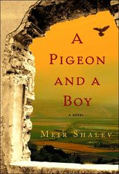 From The Odyssey onward, the search for home has been a compelling literary theme, but few have done it with more style than Meir Shalev in his latest novel, A Pigeon and a Boy. I Love Books, Good Books, My Books, Palestine, Literary Themes, Falling In Love Again, Second Love, Never Grow Up, Fantasy