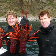 A great catch of delicuos lobsters off Kangaroo Island, South Australia. #lobster #fishing #australia #crustacean #yum #seafood South Australia, Australia Travel, Fishing Australia, Monster Fishing, Kangaroo Island, Australia Animals, Beautiful Places, Amazing Places, Pictures Of People