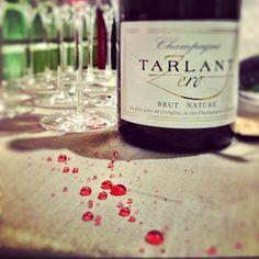 follow the bubbles #tarlant