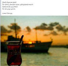 Şimdi, diyorum. Şimdi. Bir deniz,denizde vapur Gökyüzünde martı Semaverde çay olmalı Bir de çaya yaren...  - Cemal Süreya