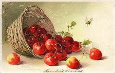 An overturned basket of cherries and a bee