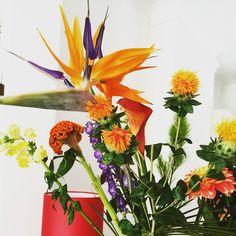 Bloomon flowers orange