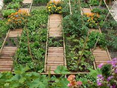 Sabores-en-un-jardin-de-los-sentidos-2.jpg (1200×900)