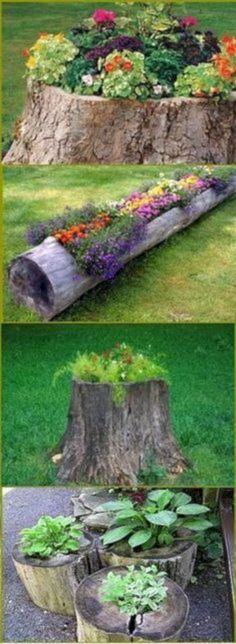 Simple But Effective Front Yard Landscaping Ideas. Beautiful Backyard And Fronty… - front yard landscaping ideas simple Log Planter, Garden Planters, Tree Planters, Planter Ideas, Tree Stump Planter, Herbs Garden, Fruit Garden, Flower Planters, Diy Planters