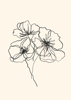 Continuous Line Art by brooke basinger Realistic Flower Drawing, Cute Flower Drawing, Easy Flower Drawings, Beautiful Flower Drawings, Butterfly Drawing, Line Art Flowers, Hand Drawn Flowers, Bouquet Of Flowers Drawing, Line Flower