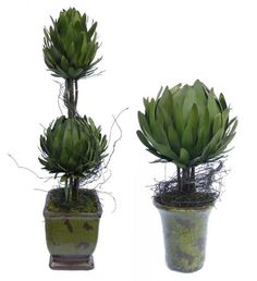 "INSPIRATION :: Artichoke Double Flame/Ball Topiary - 20"" & 11"" :: Cool idea! you could make your own w/ faux artichokes, sticks, moss & a pot/urn...or real artichokes for a centerpiece. 