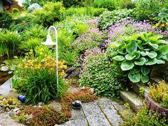 Gartenbuddelei: Zeig uns Deinen Garten! Heute: Der Garten von Renate