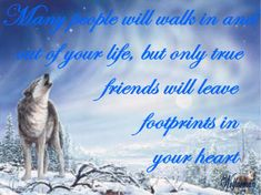 spirit sayings   Jenice/WOLF SPIRIT's Page - JenSocial: Social Web Directory & Ning ...