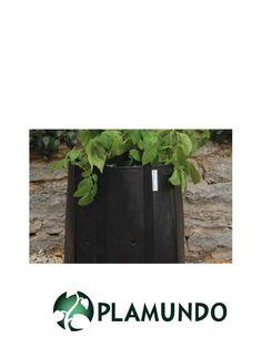 Home Allotment® rechteckiger Pflanzbeutel für Kartoffeln von Burgon & Ball, 2 Stück | Plamundo Garten Shop
