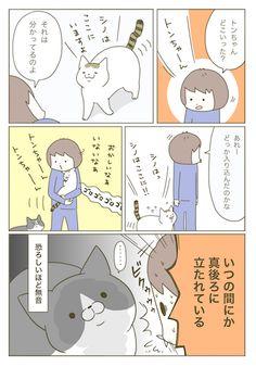 Animals And Pets, Cute Animals, Cat Comics, Funny Cute, Neko, Manga, Languages, Illustration, Fictional Characters