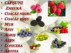 Raspberry, Breakfast, Food, Farm Gate, Lawn And Garden, Morning Coffee, Essen, Meals, Raspberries