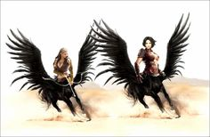 Winged Centaurs by mplumb