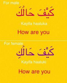 (Fabienne) Arabic MSA Arabic Verbs, Arabic Phrases, Arabic Quotes, Arabic To English Translation, Learn English, English Language Learning, Language Lessons, Spoken Arabic, Speak Arabic