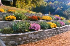 Planting Borders And Flower Beds | ... design for a raised garden bed planting in terracing border feature