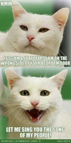 Happens everynight