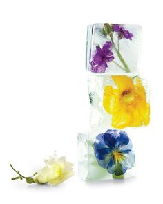 Flowers in ice cubes, pretty idea. If you can, jiggle the ice cube tray periodicity to disperse air bubbles, besides the usual clear cube tricks.
