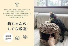 猫ちゃんのちぐら教室 参加者募集中!(完全予約制)  数年待ちのわら製の猫ちぐらをご存知ですか? そんなに待てない!という方に‥‥ 紙ひもを使って猫ちゃんのために愛情がこもった世界に1つしかない手作りのちぐらを一緒に作ってみませんか? ※完成時のサイズ……直径約35cm、高さ約35cm 猫ちゃんのサイズに合わせてお作りいただけます。  イベントの詳細はコチラ http://www.ryu-ryu.com/cgi-bin/news/detail.cgi?no=862  日時: [1]平日コース 10/3(火)・10/17(火)・10/31(火) [2]週末コース 10/28(土)・11/11(土)・11/25(土) ※どちらの回も10:00~13:00(3時間×3回)  定員: 各コース4名様  講習費: 10,000円(税別)  材料費: 4,000円(税別)  持ち物: ハサミ、初回にお渡しする紙ひも16玉が入る袋  場所: カムカムビル 3階(スペースR隣り) ※「スペースR」 2階にお集りください。 「スペースR」 兵庫県芦屋市茶屋之町1-12…
