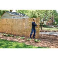Chain Link Fence Privacy, Diy Fence, Fence Landscaping, Pallet Fence, Fence Ideas, Cedar Trellis, Bamboo Fence, Reed Fencing, Garden Fencing