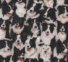 1 yard Border Collies Only Dog Print by HotDiggityDogFabrics, $17.82