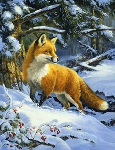 Linda Picken Art Studio / Fox in Snow.jpg