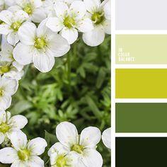 Color Palette No. Color Harmony, Color Balance, Balance Design, Colour Schemes, Color Combos, Paleta Pantone, Colors And Emotions, Green Colour Palette, Green Colors