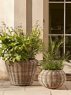 Made from natural rattan with a discreet waterproof plastic liner pot, our oversized bucket shaped planter is perfect for larger plants and shrubs. Also suitable for indoor us, it will provide an attractive home for your favourite blooms. Rattan Planters, Rattan Basket, Garden Planters, Mad About The House, Outdoor Gifts, Large Plants, Basket Decoration, Indoor Outdoor Living, Affordable Home Decor