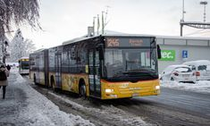 Post Bus, Lion, Poster, Autos, Swiss Guard, Leo, Lions, Posters