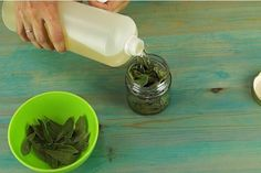 Es fantástico la cantidad de beneficios que podemos obtener si combinamos el aceite de oliva con el laurel. Todos sabemos que el laurel es un muy buen condimento que tiene un lugar especial en todas las cocinas. Pero lo que no sabemos que estas hojas además de utilizarlas para preparar alimentos también son útiles en …