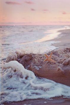 Summer | Beach picture