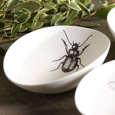 I pinned this Beetle Bowl from the Zodax event at Joss and Main!