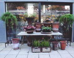 From a garden center in Stockholm, Sweden Beautiful metal stands, pots, boxes Höstmarknad 2012  I  Zetas Trädgård