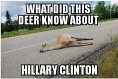 Funny on Hillary, not the poor deer.
