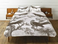 Ornithology Duvet Cover in Slate design by Thomas Paul