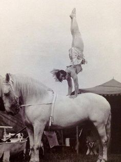 May Wirth, equestrienne extraordinaire in 1926. May (1894-1978) was born May Zinga, and adopted by the sister of Phillip and George Wirth, Marizles Wirth, who later married John Martin. May Wirth is regarded as one of the greatest female acrobats on horseback of all times. May began her career in Australia's Wirths Circus before being engaged by John Ringling for two seasons to tour with his Barnum Bailey circus.