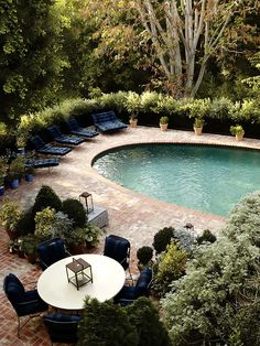 Ideas for landscaping around the pool ...