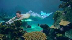 J E L L Y F I S H Realistic Mermaid Tails, Fin Fun Mermaid Tails, Silicone Mermaid Tails, Mermaid Song, Mermaid Poster, Mermaid Art, Ocean Creatures, Mythical Creatures, Merman Costume