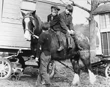 Gypsy boys, and their horse.....
