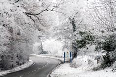 Snow scene on the road to Banbridge, County Down, Northern Ireland | Recent Photos The Commons Getty Collection Galleries World Map App ...