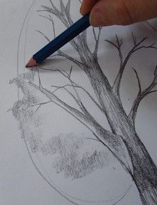 Pencil Drawing Tutorials How to draw a tree tutorial - How To Draw A Tree: Step by step tutorial with photos showing how to draw seven different trees. Drawing Lessons, Drawing Tips, Art Lessons, Drawing Ideas, Drawing Journal, Learn Drawing, Figure Drawing, Basic Drawing, 3d Drawings