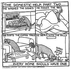 Aiuti domestici... ^_^ #cani