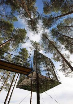 a pending tree hotel complex -- part of an eco-tourism project in the northern part of Sweden, near the arctic circle.  accommodates two people in a mini-bedroom apartment with small bath, living area and a roof terrace, hanging in mid-air, rope bridge access. To ensure that the birds do not fly into the walls, the mirror surfaces have a special UV layer, which only birds are able to see.